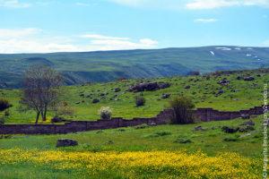 Armenia_only2weeks