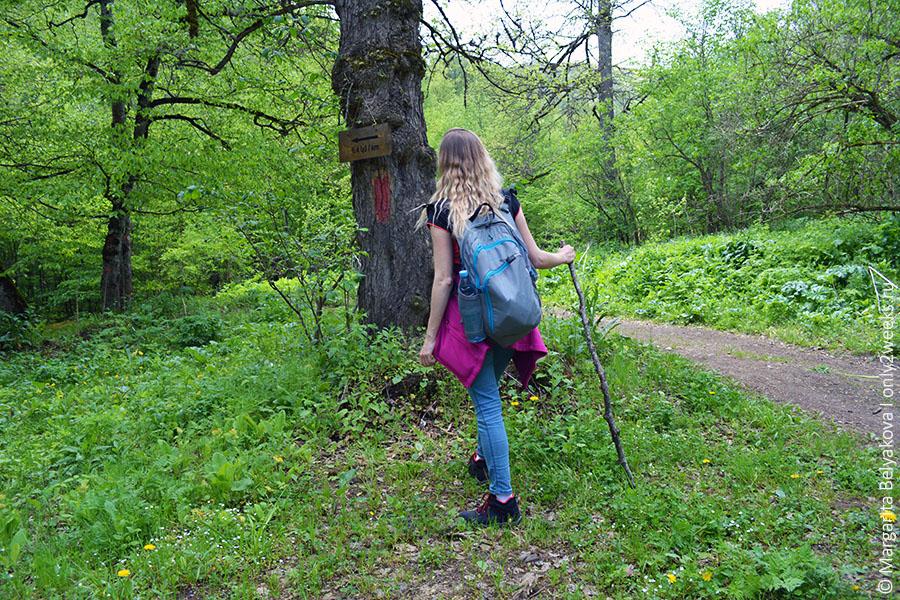 Diligan_treking k monastyru gosh_9