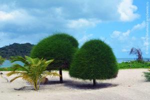 malibu beach Phangan