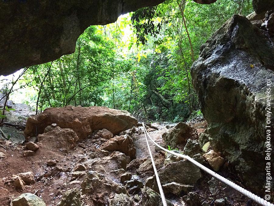 bua-bok-cave-ang-tong-tailand