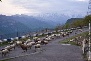 armenia-chto-posmotret-turistu