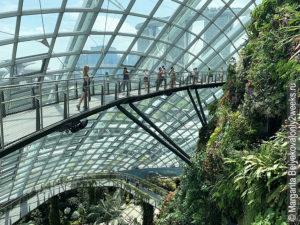 Cloud-Forest-singapore