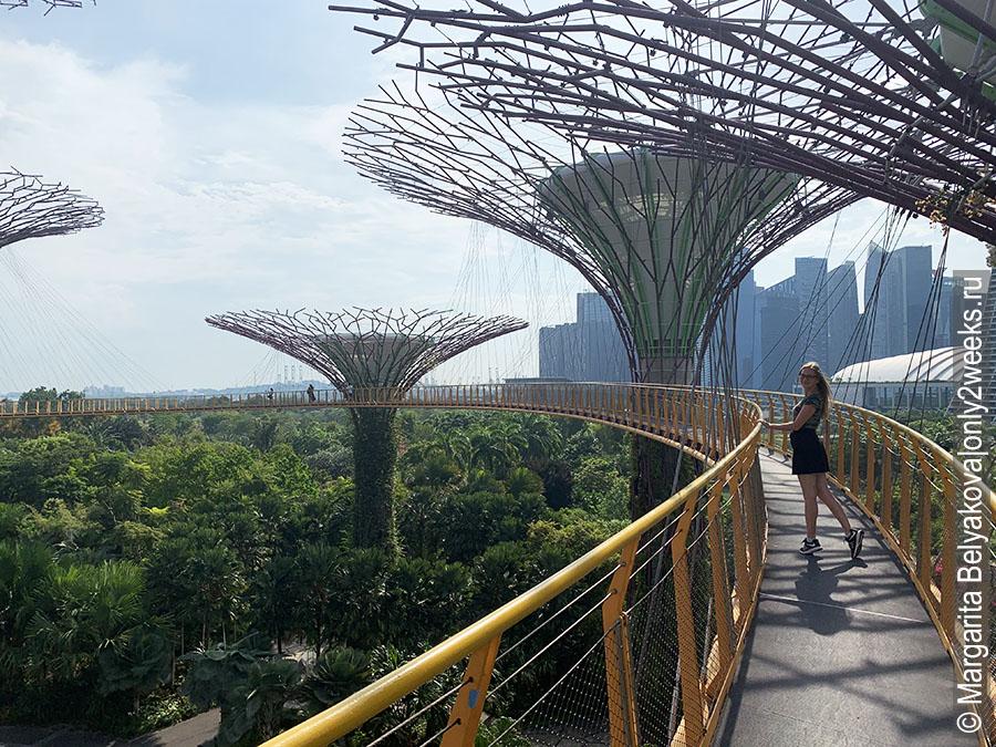 OCBC-Skyway-singapore
