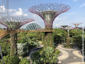 Gardens-by-the-Bay-singapoure