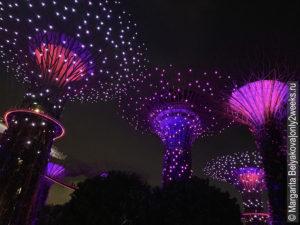 Supertree-Grove- singapure