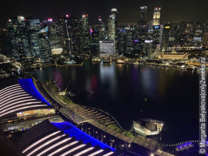 vid-so-smotrovoy-ploshadki-marina-bay-singapore