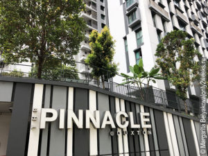 The-Pinnacle-Duxton-Singapore