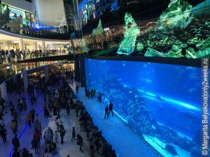 Aquarium-Dubai-mall-foto