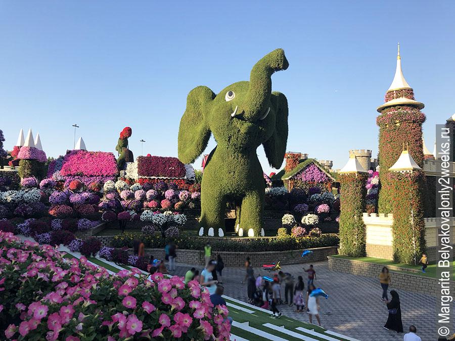 park-tsvetov-i-babochek-v-dubay