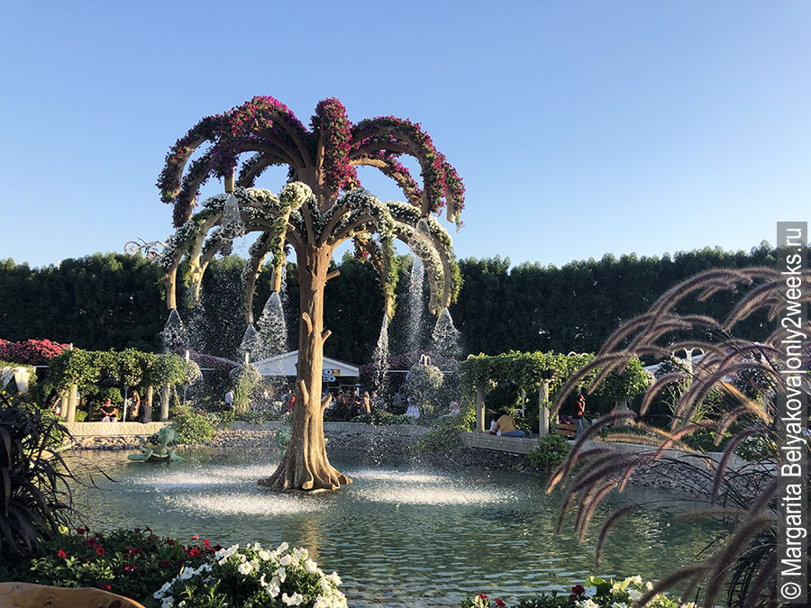 Lake-park-dubai-miracle-garden