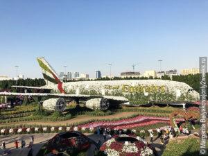 samolet-Emirates-A380-v-parke-tsvetov-v-Dubaye