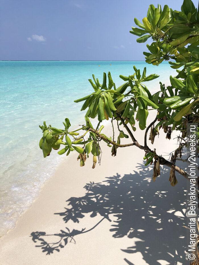 foto-maldivy-plyazh-more