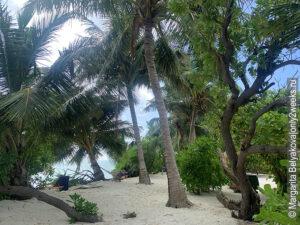gde-luchshe-otdokhnut-na-maldivah-nedorogo