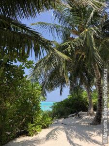 Thoddoo-beach-foto-maldivy